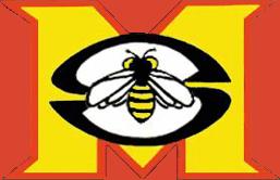 Maryland Stingers Logo